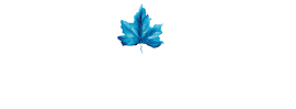 Majestic D&J Ltd